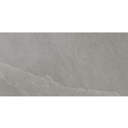 Seed Grey Ceramic Wall Tile 250x500